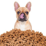 The 7 Best Dog Treats For Small Dogs