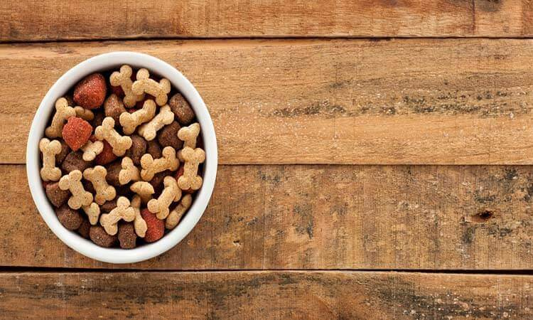 The 7 Best Freeze-Dried Dog Food Toppers